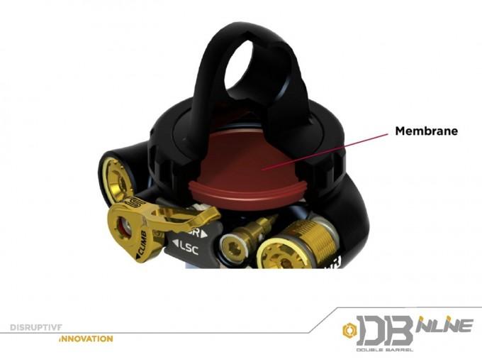 DBinline membrana