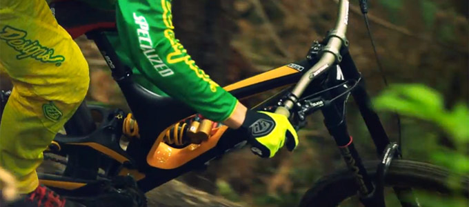 Specialized Carbon Demo 650B DH