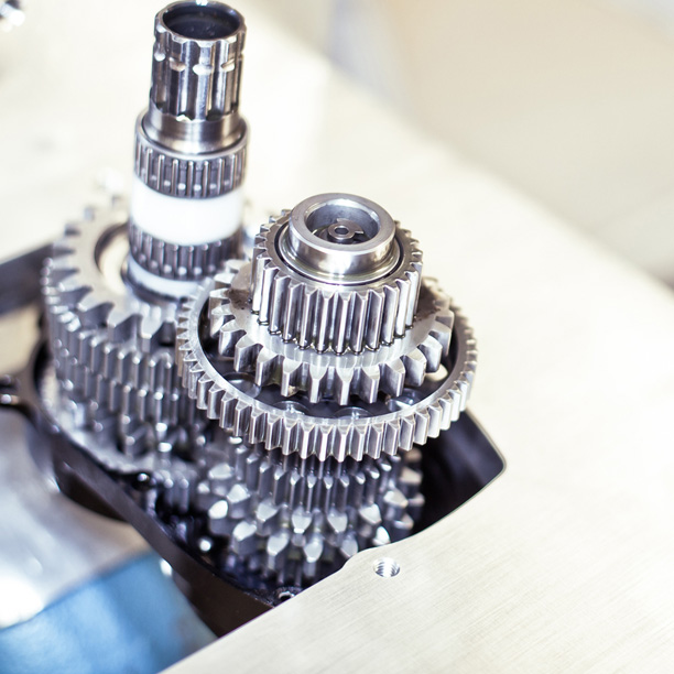 Pinion mecanismo