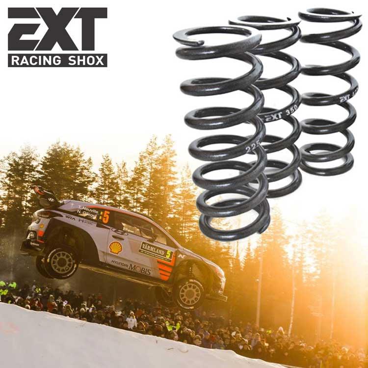 Extreme Racing Shox mtb