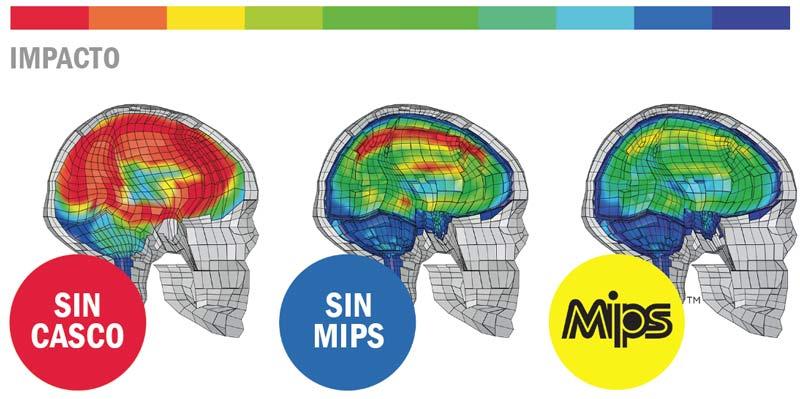 MSC MIPS